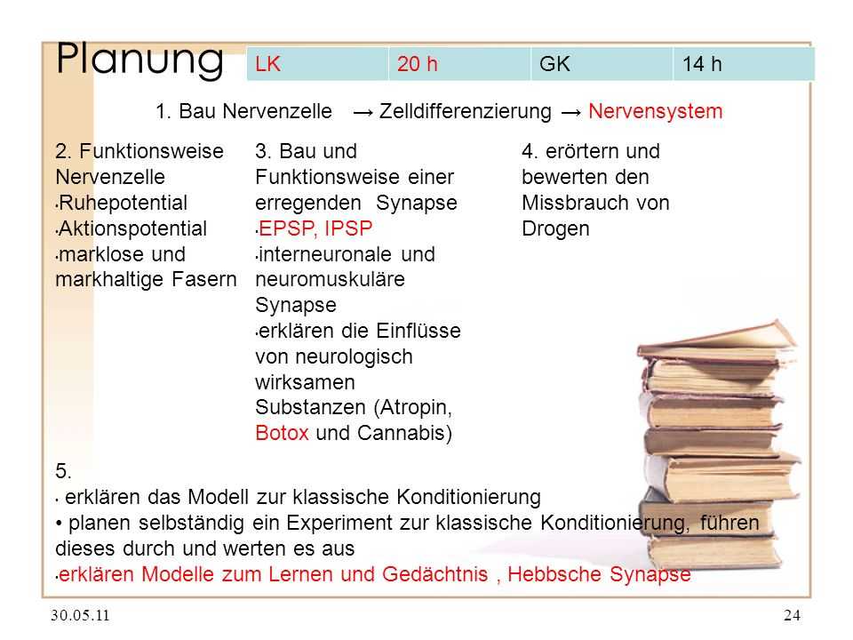 Planung LK. 20 h. GK. 14 h. 1. Bau Nervenzelle → Zelldifferenzierung → Nervensystem. 2. Funktionsweise Nervenzelle.