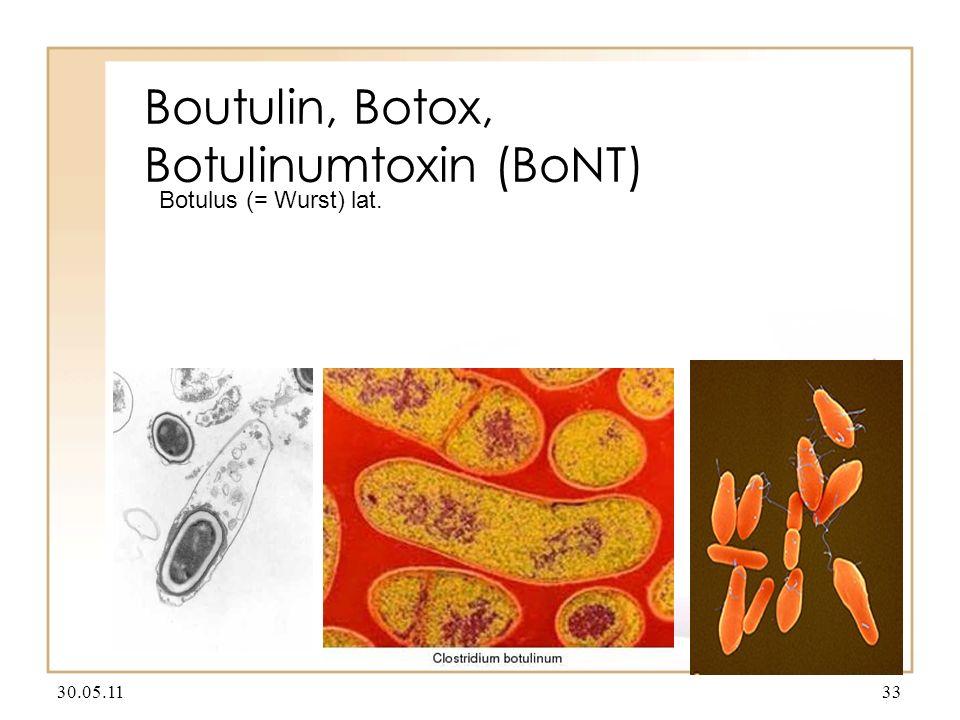 Boutulin, Botox, Botulinumtoxin (BoNT)
