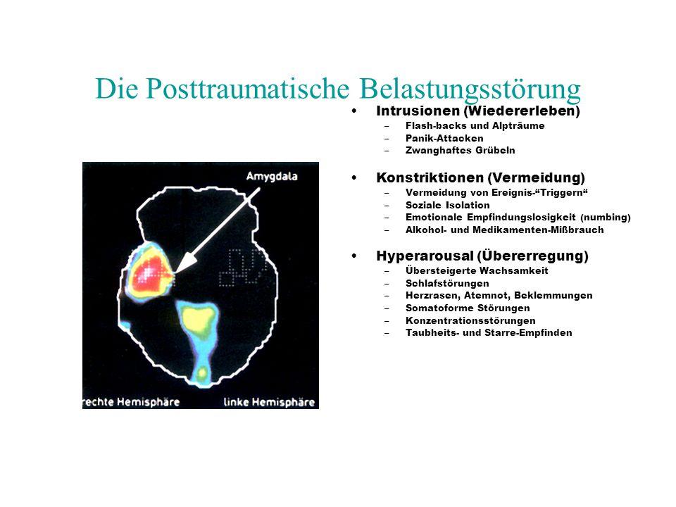 Die Posttraumatische Belastungsstörung