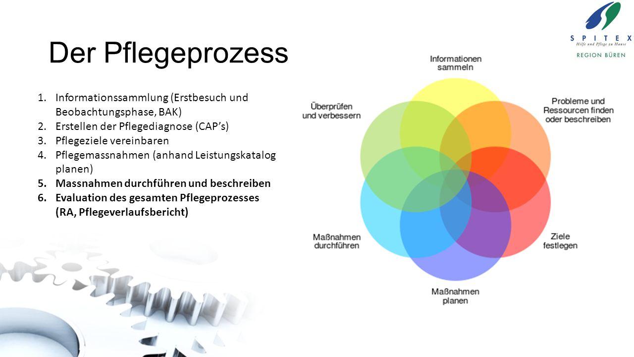 Der Pflegeprozess Informationssammlung (Erstbesuch und Beobachtungsphase, BAK) Erstellen der Pflegediagnose (CAP's)