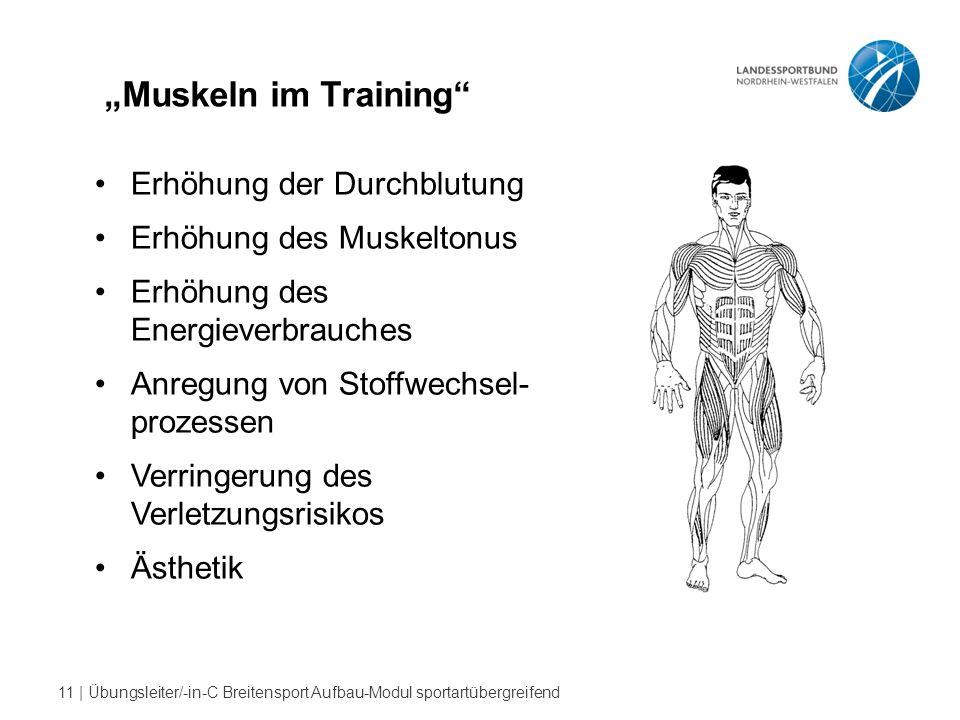 """""""Muskeln im Training Erhöhung der Durchblutung"""