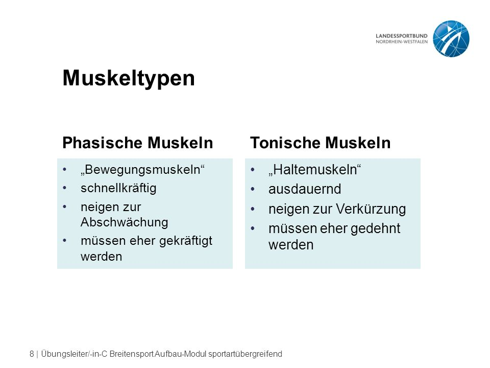 "Muskeltypen Phasische Muskeln Tonische Muskeln ""Haltemuskeln"