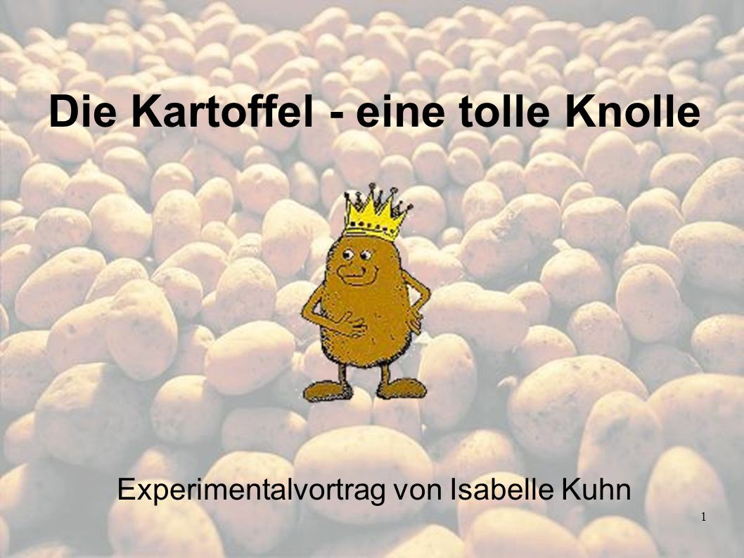 Die Kartoffel - eine tolle Knolle Experimentalvortrag von Isabelle Kuhn