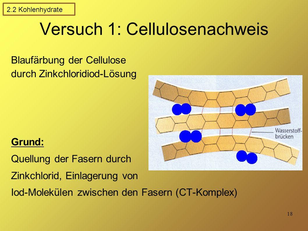 Versuch 1: Cellulosenachweis