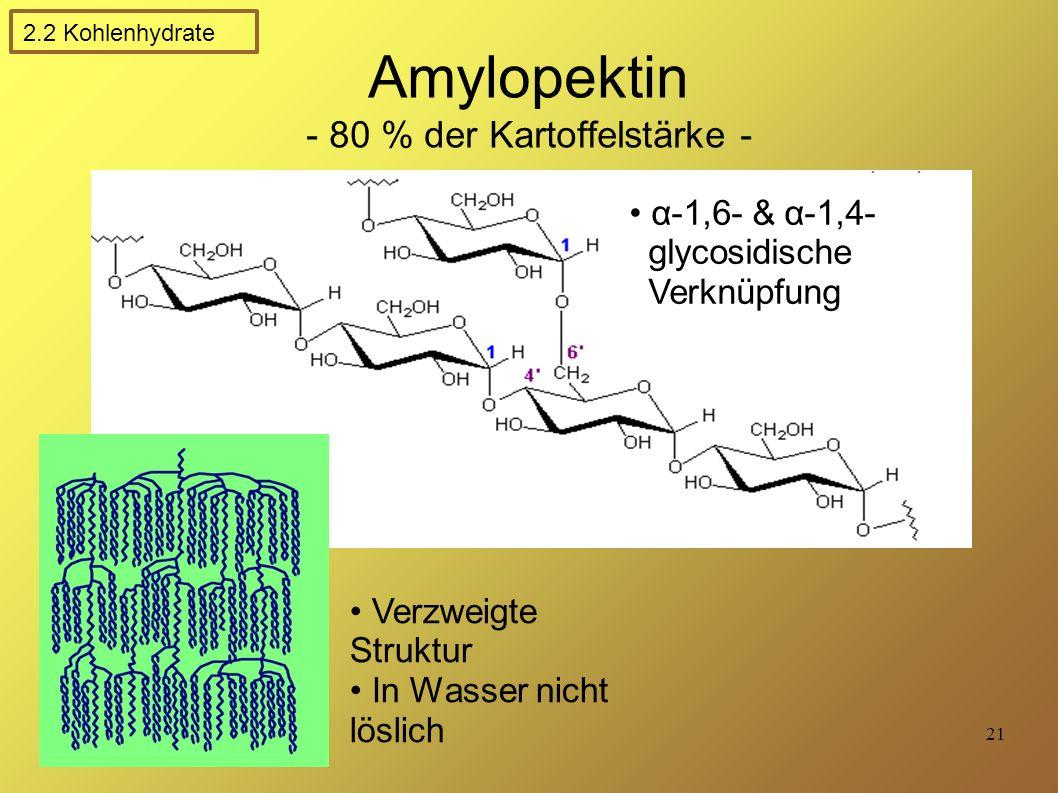 Amylopektin - 80 % der Kartoffelstärke -