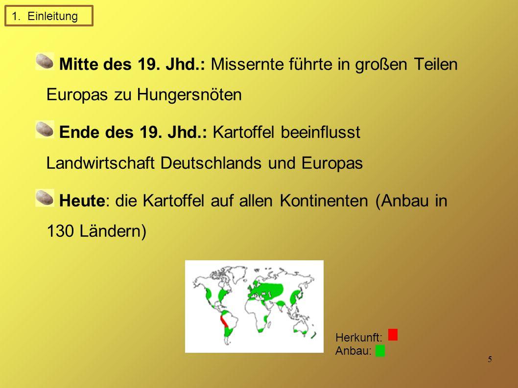 Heute: die Kartoffel auf allen Kontinenten (Anbau in 130 Ländern)