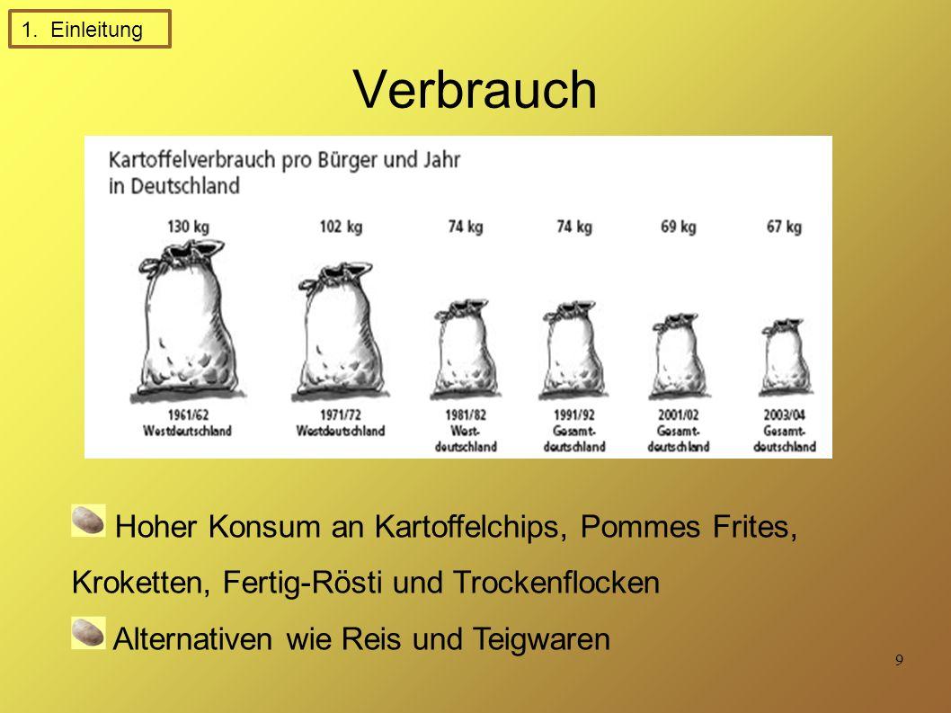 1. Einleitung Verbrauch. Hoher Konsum an Kartoffelchips, Pommes Frites, Kroketten, Fertig-Rösti und Trockenflocken.