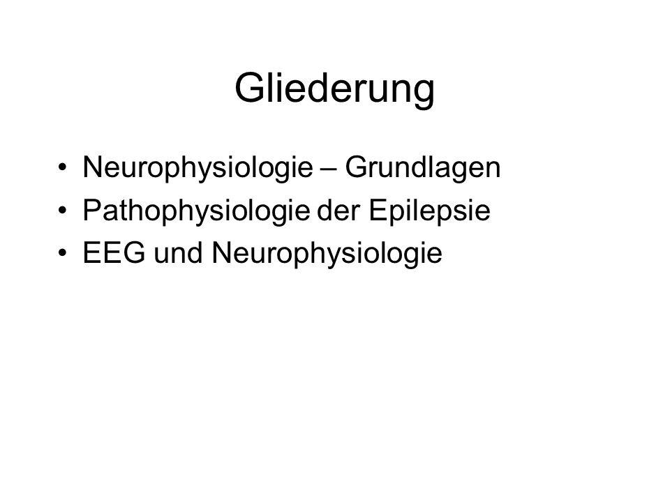 Gliederung Neurophysiologie – Grundlagen