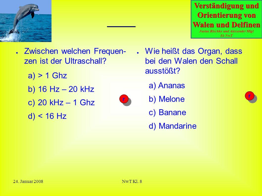 Quiz Zwischen welchen Frequen- zen ist der Ultraschall > 1 Ghz