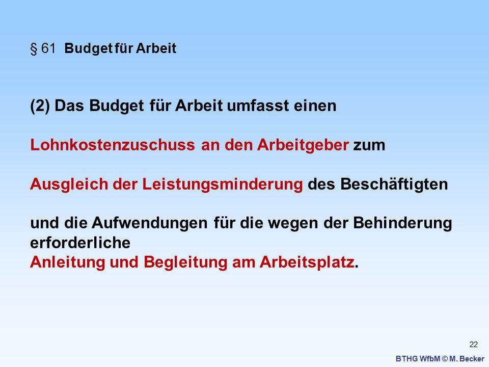 (2) Das Budget für Arbeit umfasst einen
