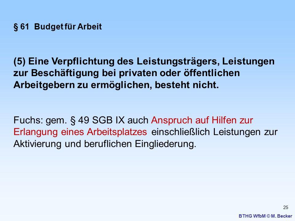 § 61 Budget für Arbeit
