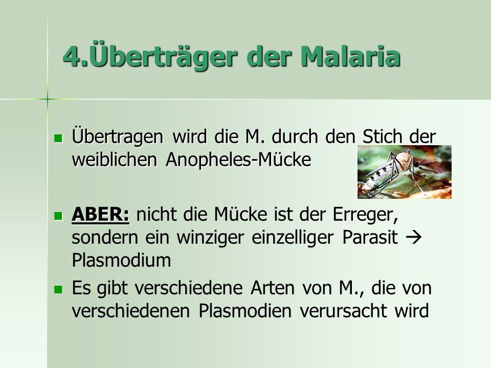 4.Überträger der Malaria