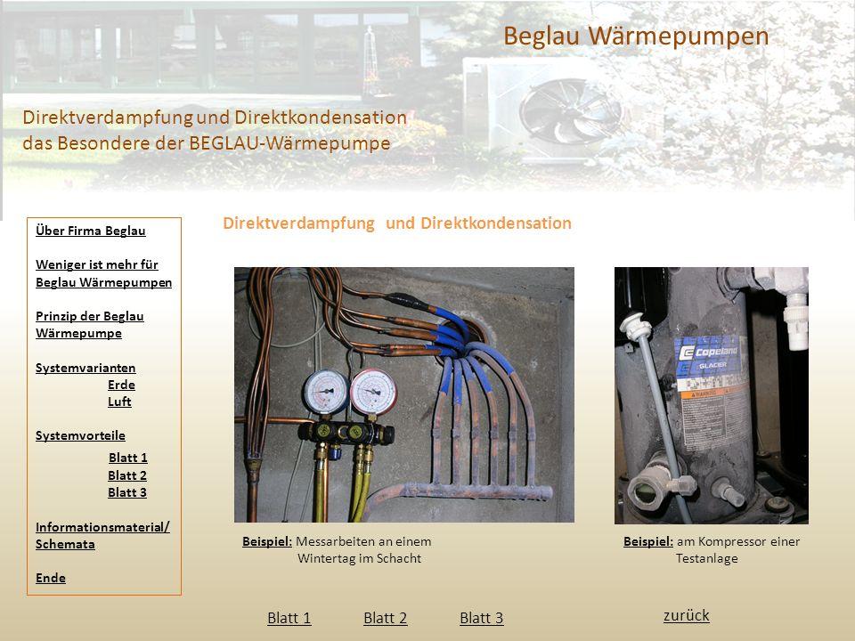 Beglau Wärmepumpen Direktverdampfung und Direktkondensation das Besondere der BEGLAU-Wärmepumpe. Direktverdampfung und Direktkondensation.