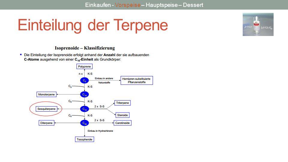 Einteilung der Terpene