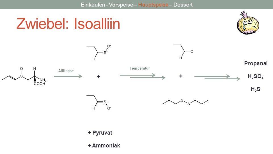 Zwiebel: Isoalliin + + Propanal H2SO4 H2S + Pyruvat + Ammoniak