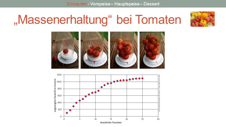 """""""Massenerhaltung bei Tomaten"""