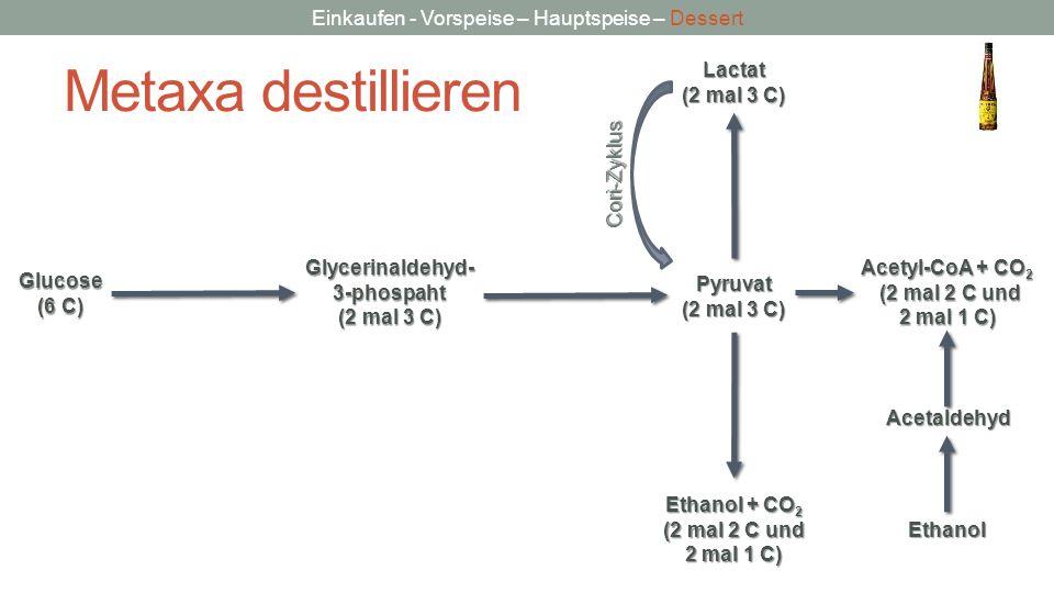 Metaxa destillieren Lactat (2 mal 3 C) Cori-Zyklus Glycerinaldehyd-