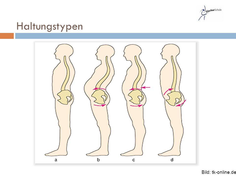 Ungewöhnlich Anatomie Des Menschen College Kurs Bilder - Anatomie ...