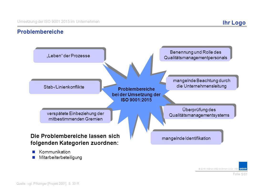 Problembereiche bei der Umsetzung der ISO 9001:2015