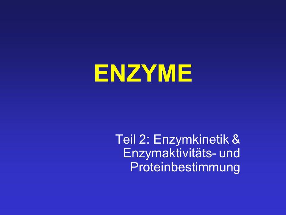 Teil 2: Enzymkinetik & Enzymaktivitäts- und Proteinbestimmung