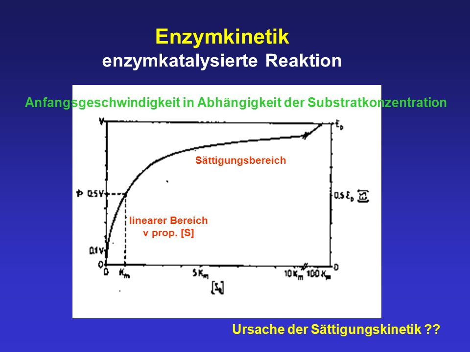 enzymkatalysierte Reaktion