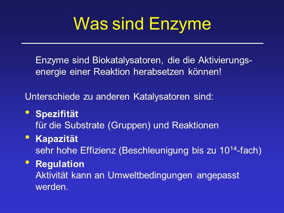 Was sind Enzyme Enzyme sind Biokatalysatoren, die die Aktivierungs-energie einer Reaktion herabsetzen können!