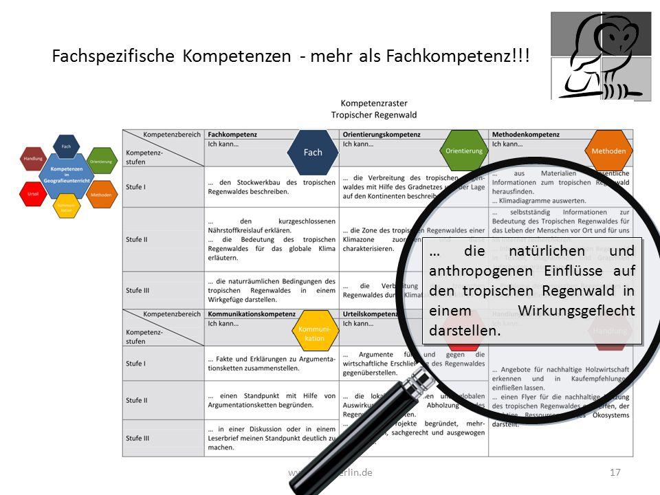 Fachspezifische Kompetenzen - mehr als Fachkompetenz!!!