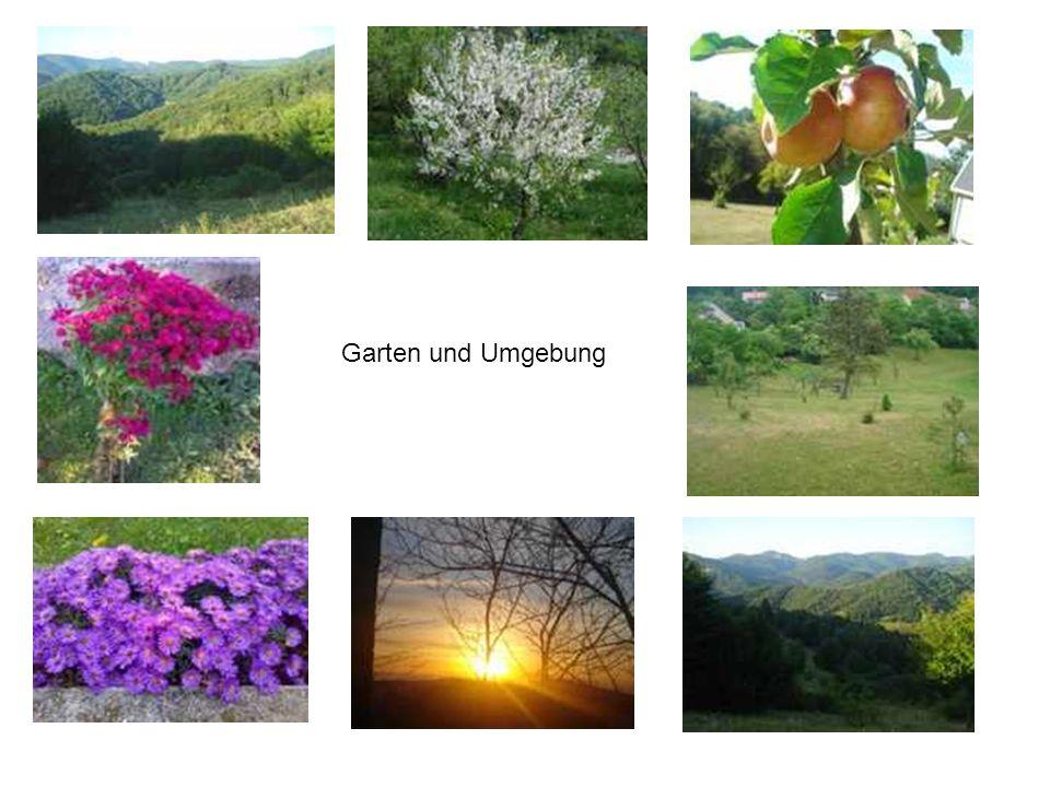 Garten und Umgebung