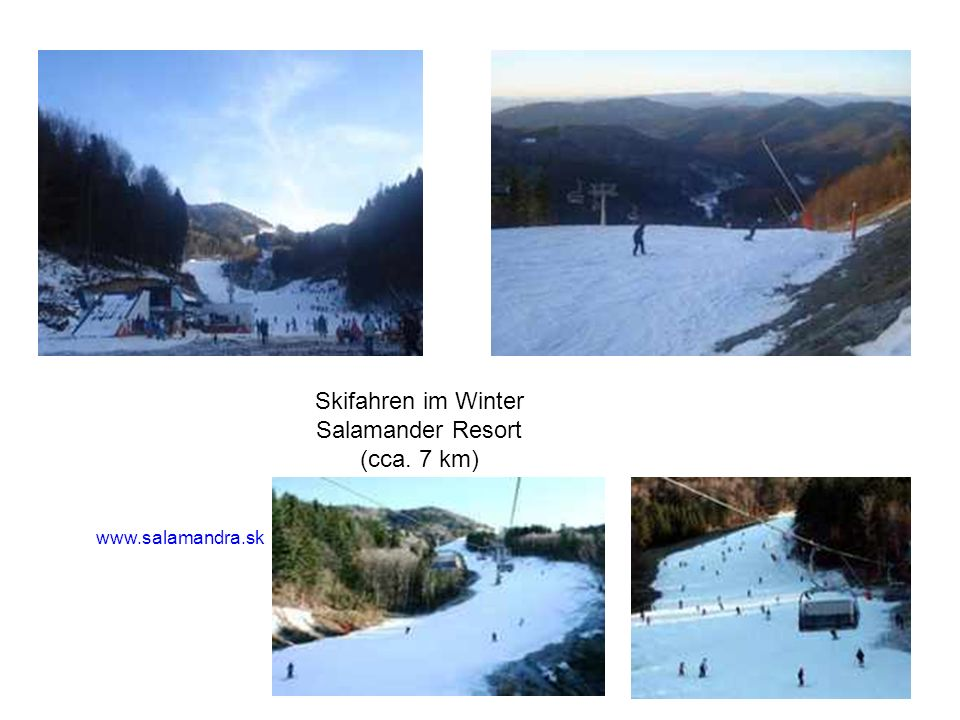 Skifahren im Winter Salamander Resort (cca. 7 km)