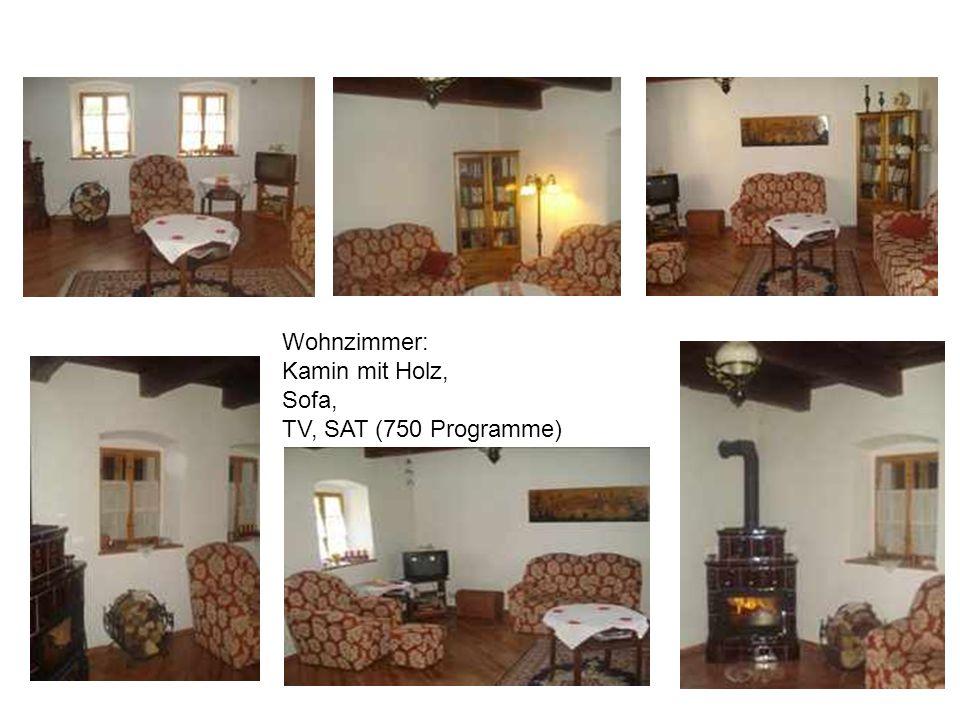 Wohnzimmer: Kamin mit Holz, Sofa, TV, SAT (750 Programme)
