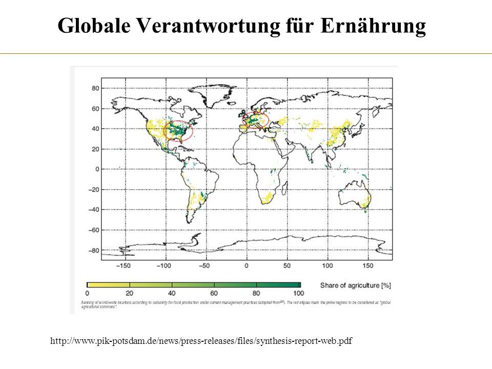 Globale Verantwortung für Ernährung