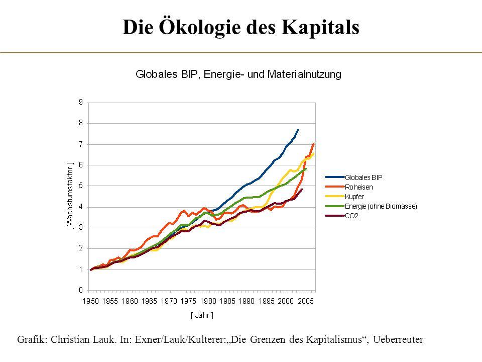 Die Ökologie des Kapitals