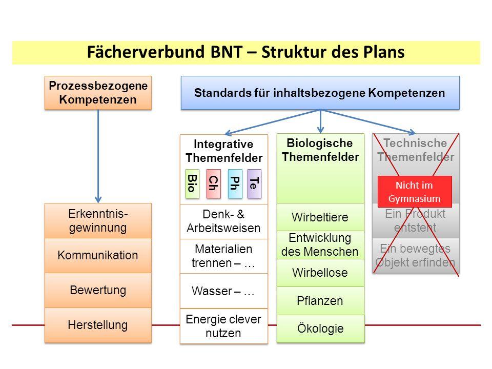 Fächerverbund BNT – Struktur des Plans