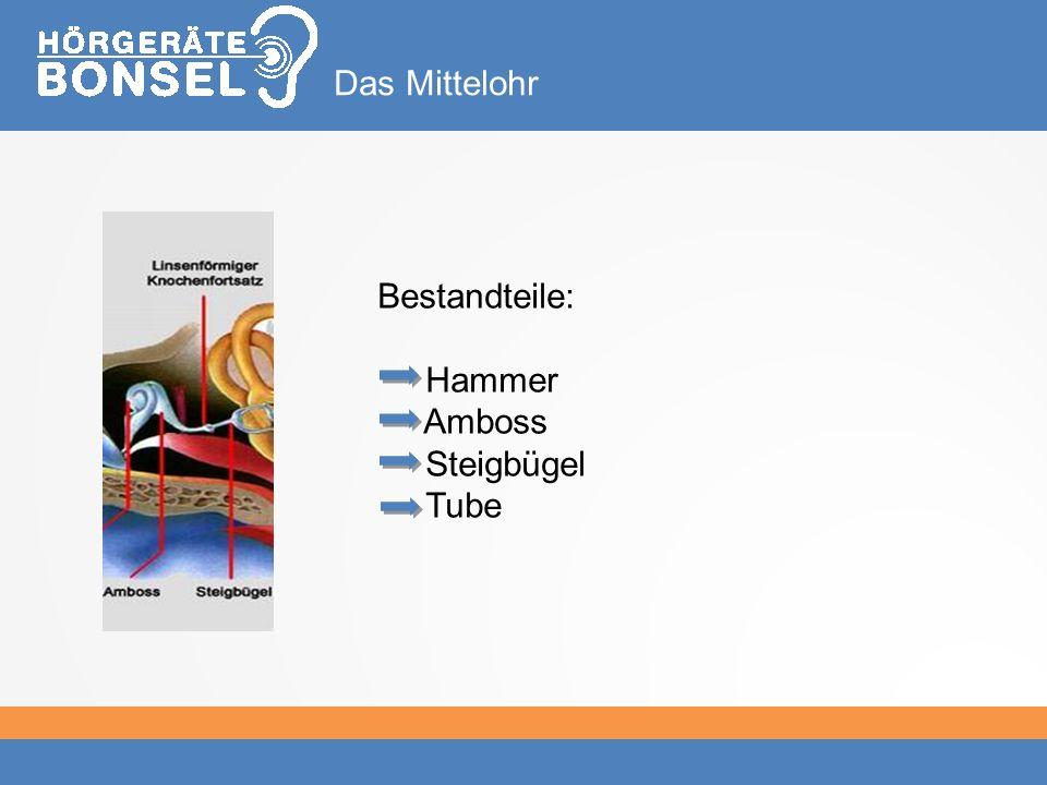 Das Mittelohr Bestandteile: Hammer Amboss Steigbügel Tube