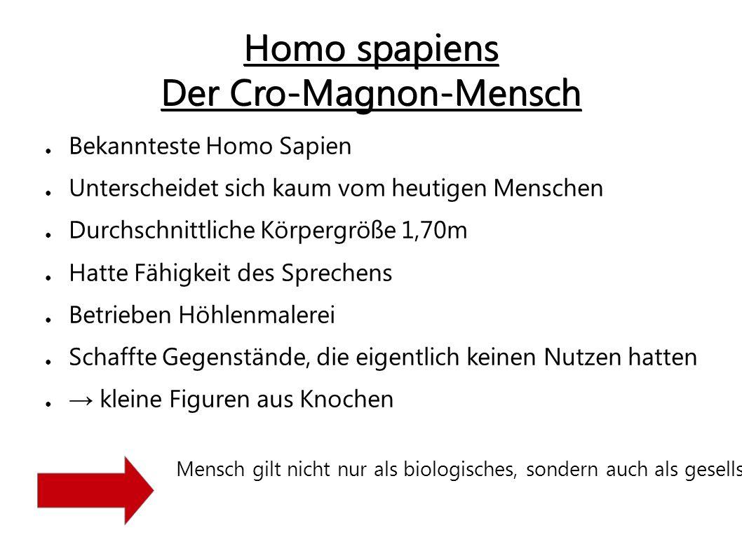 Homo spapiens Der Cro-Magnon-Mensch