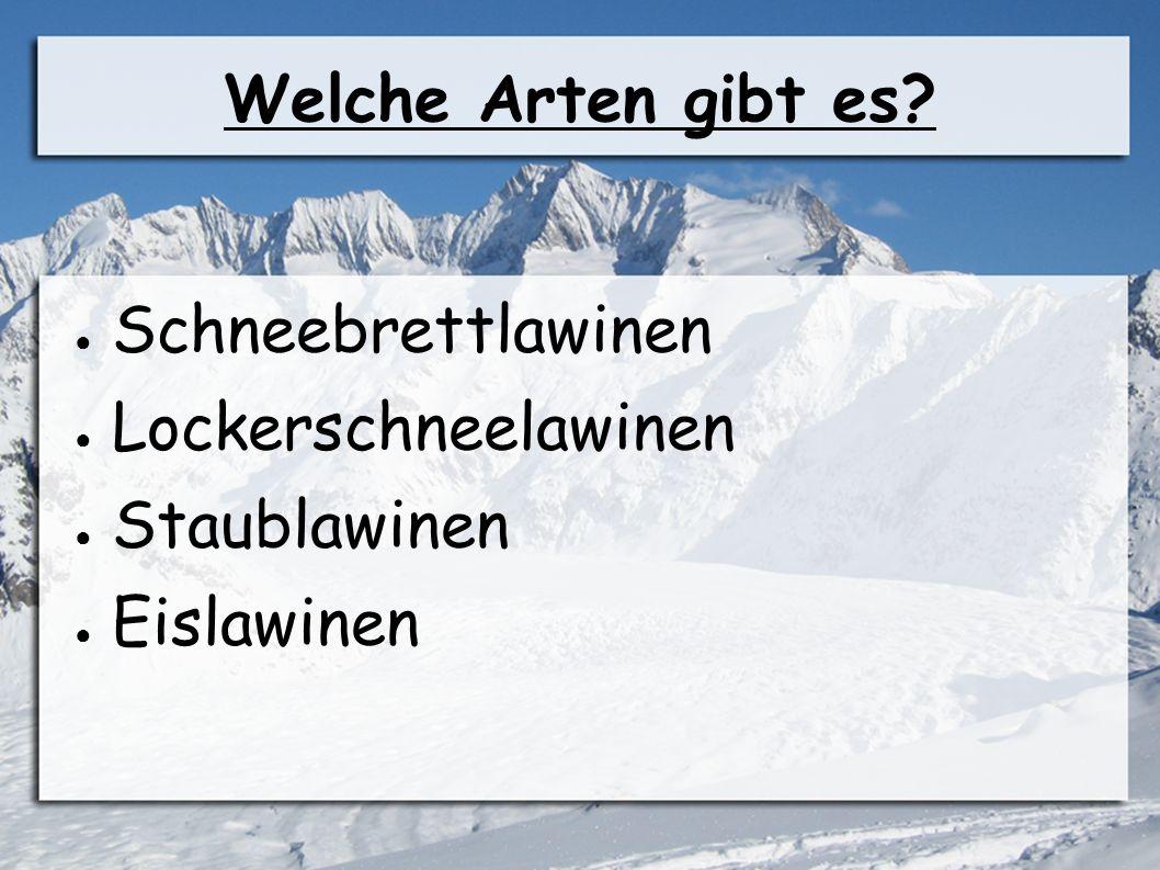 Welche Arten gibt es Schneebrettlawinen Lockerschneelawinen Staublawinen Eislawinen