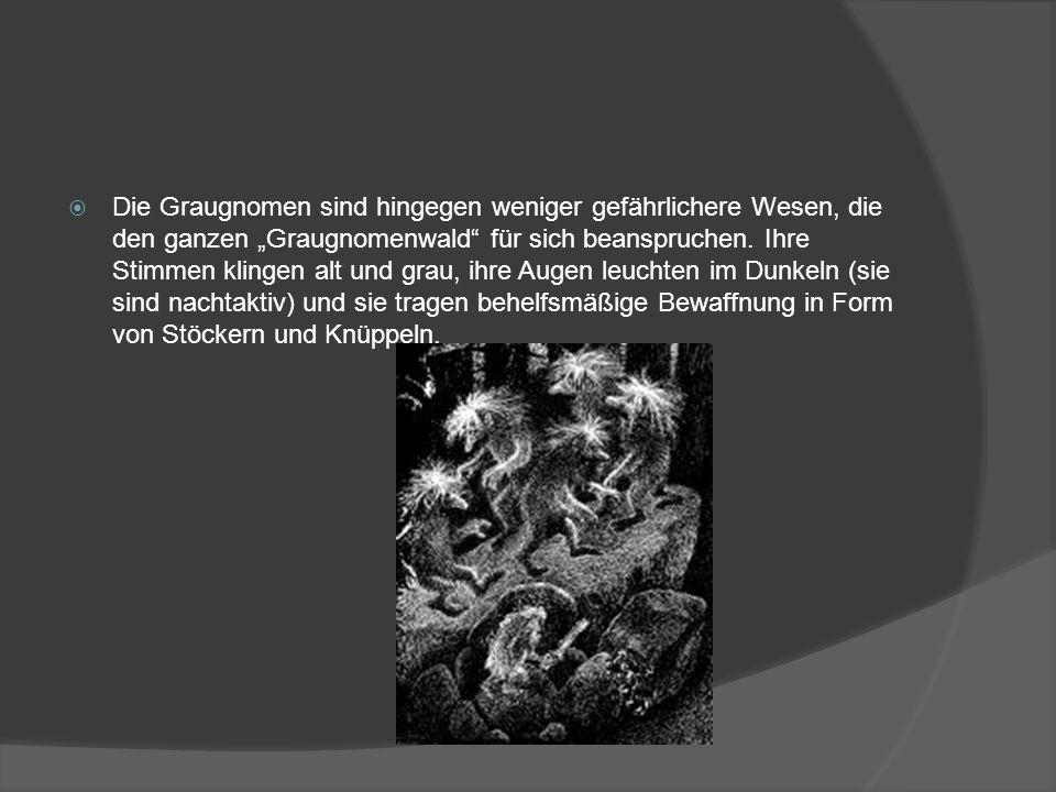 """Die Graugnomen sind hingegen weniger gefährlichere Wesen, die den ganzen """"Graugnomenwald für sich beanspruchen."""