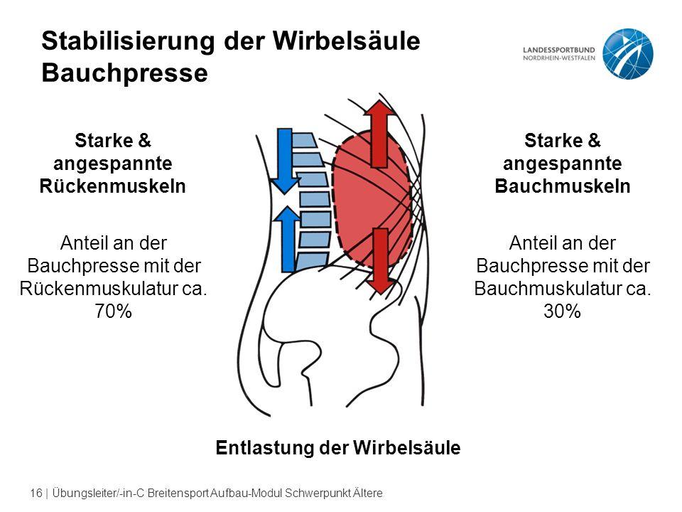Stabilisierung der Wirbelsäule Bauchpresse