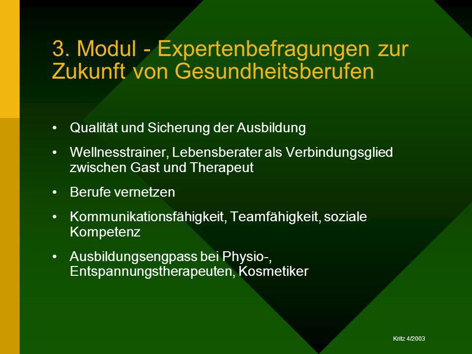 3. Modul - Expertenbefragungen zur Zukunft von Gesundheitsberufen