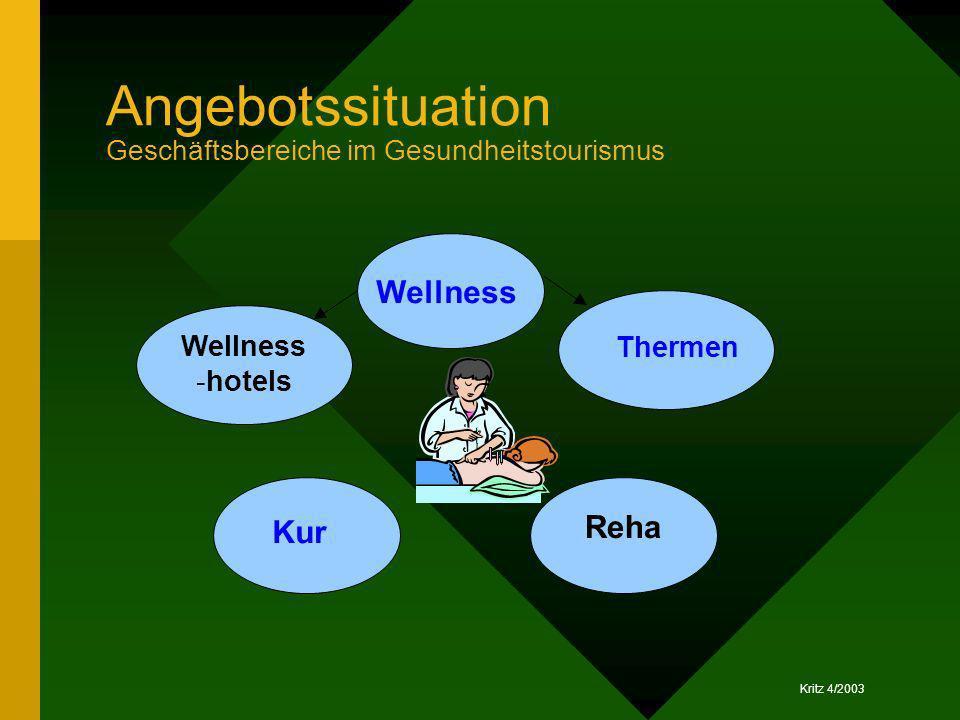 Angebotssituation Geschäftsbereiche im Gesundheitstourismus
