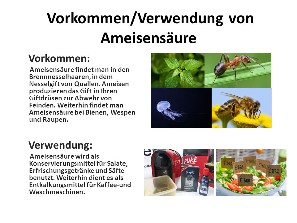 Vorkommen/Verwendung von Ameisensäure