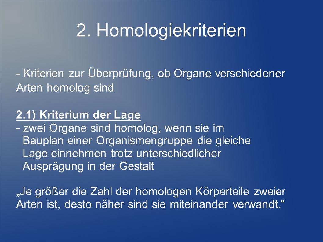 2. Homologiekriterien - Kriterien zur Überprüfung, ob Organe verschiedener Arten homolog sind.