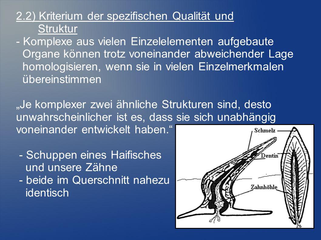 2.2) Kriterium der spezifischen Qualität und