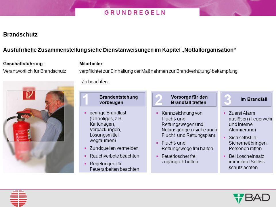 """Brandschutz Ausführliche Zusammenstellung siehe Dienstanweisungen im Kapitel """"Notfallorganisation Geschäftsführung:"""