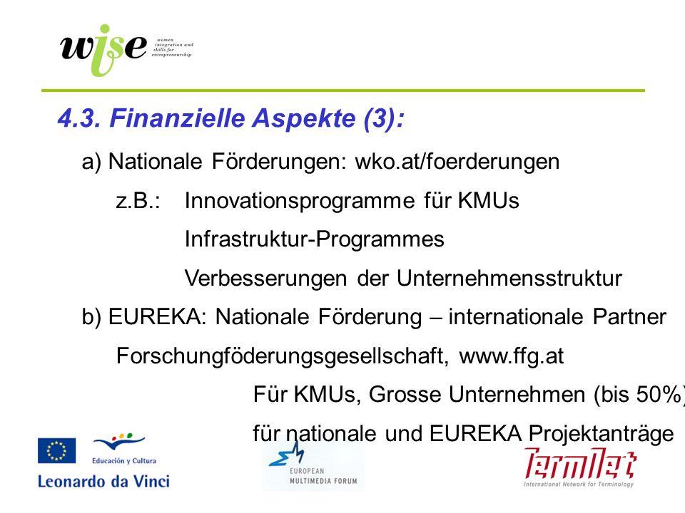 4.3. Finanzielle Aspekte (3):