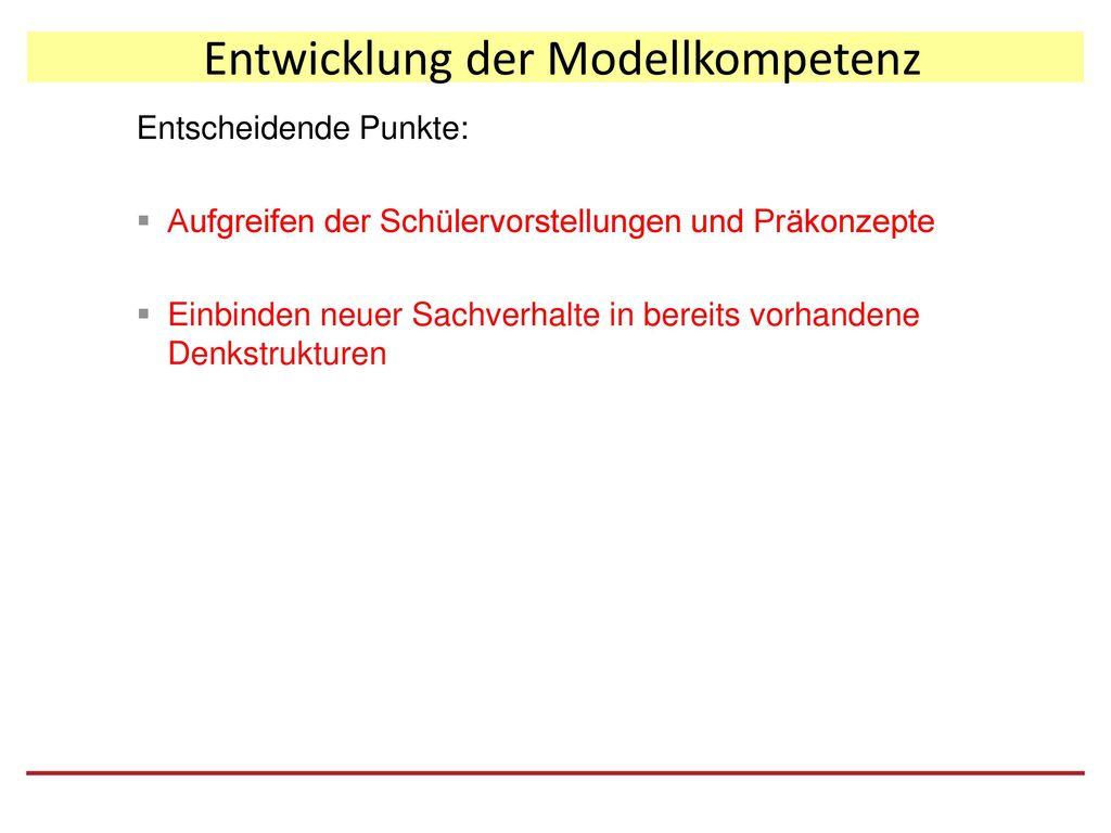 Entwicklung der Modellkompetenz