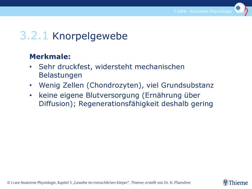 3.2.1 Knorpelgewebe Merkmale: