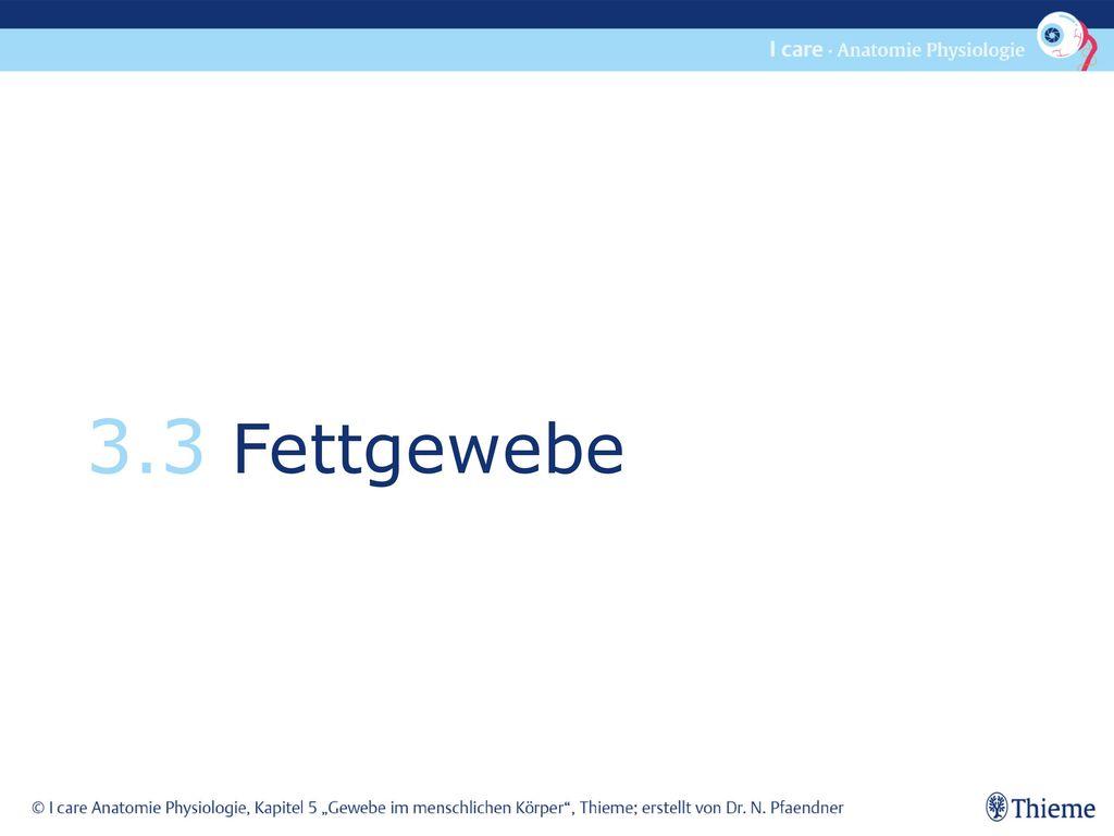 Berühmt Gewebe Quiz Anatomie Und Physiologie Ideen - Menschliche ...
