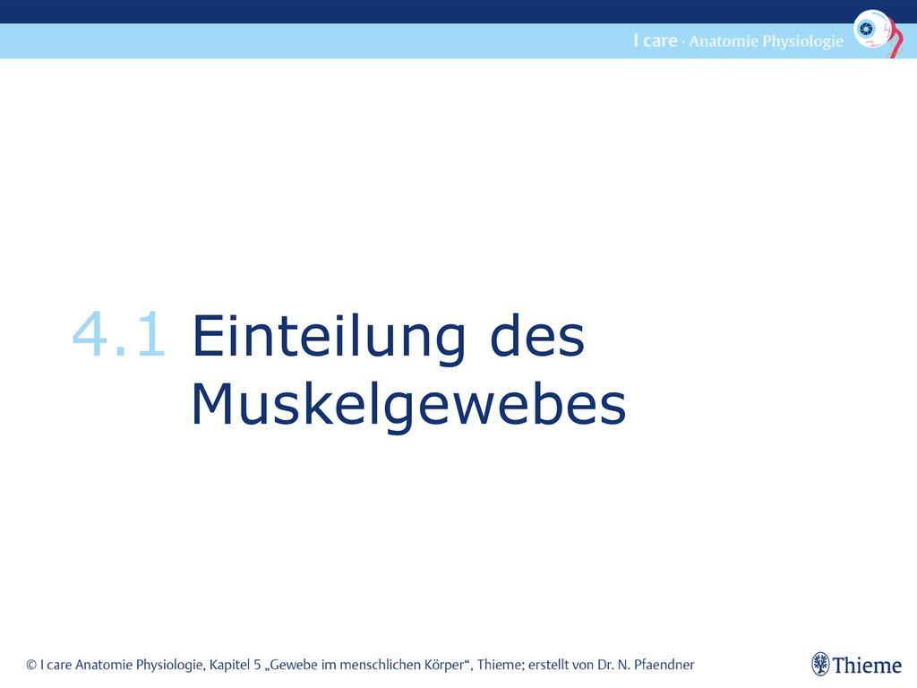 Ungewöhnlich Gewebe Anatomie Und Physiologie Galerie - Menschliche ...