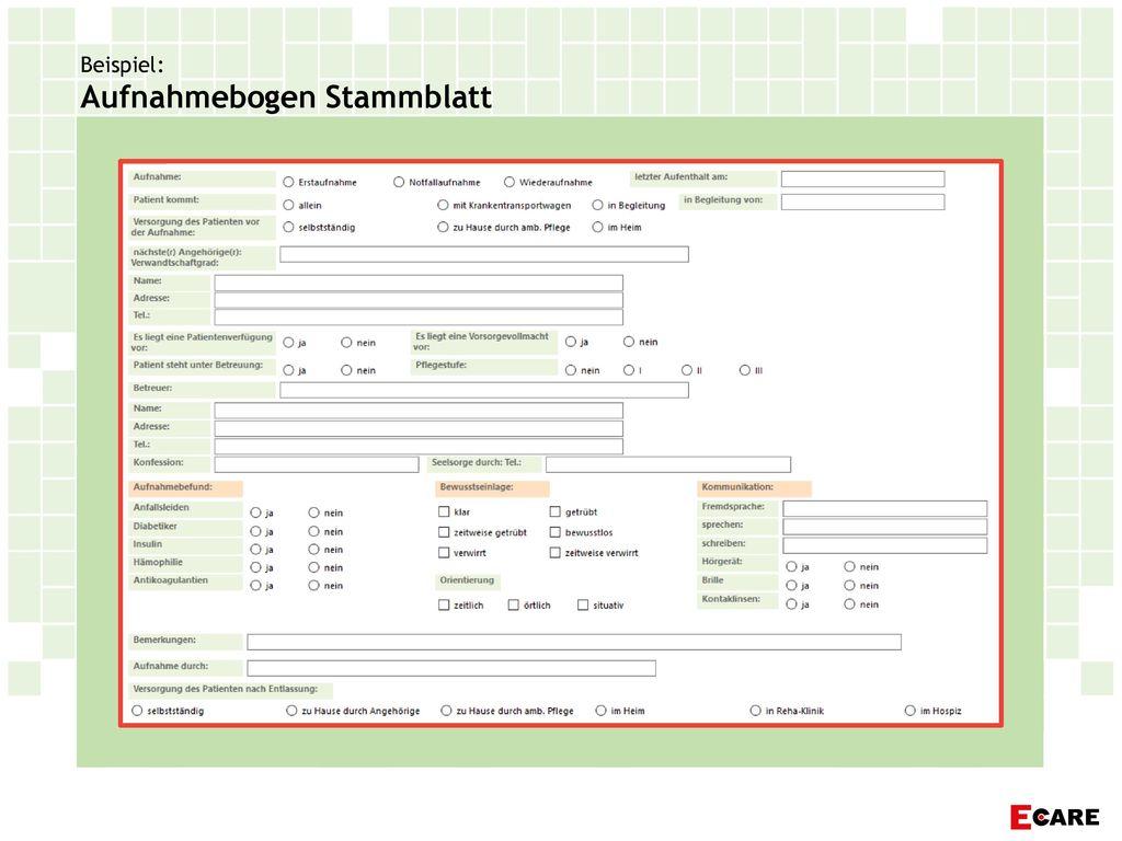 Beispiel: Aufnahmebogen Stammblatt